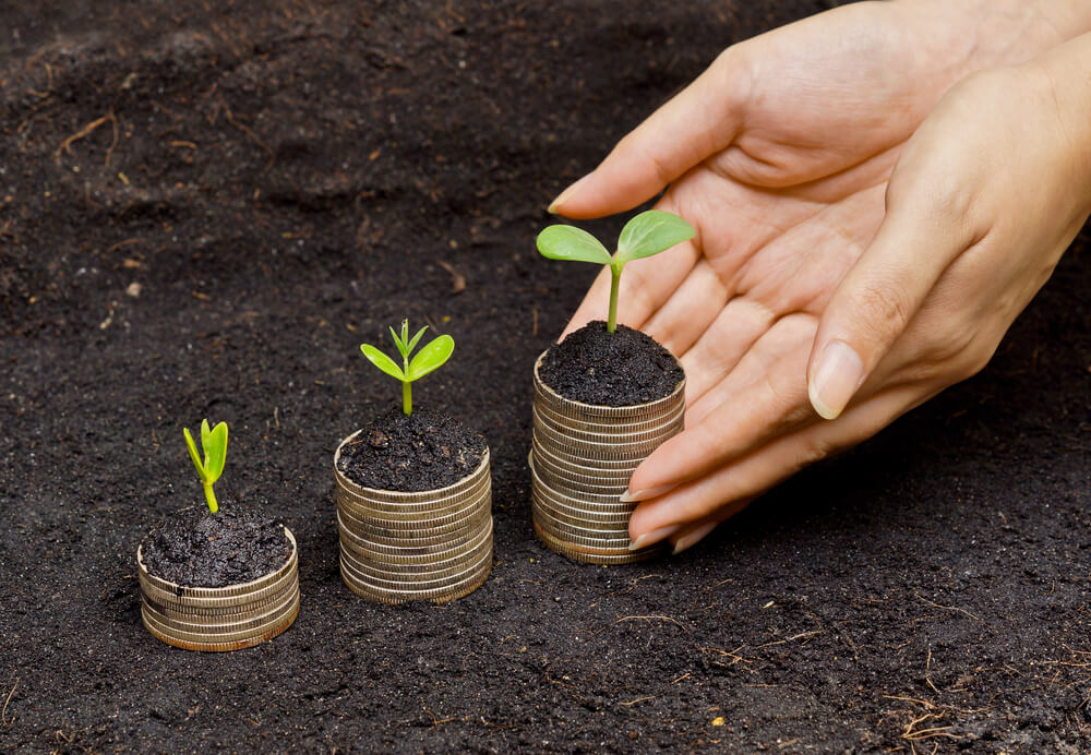 Best Online Courses On Sustainability